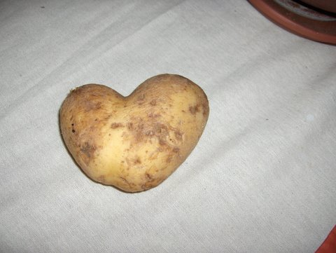 20070526105650-patata.jpg
